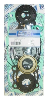 Complete Gasket Kit for Polaris 1200cc 2000-2002 007-647-05
