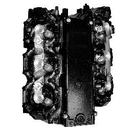 "Remanufactured Powerhead for Mercury 225hp Optimax DFI 3.0 Liter V6 1998 Only 3.6265"" Cylinder Bore TS 010-2196"